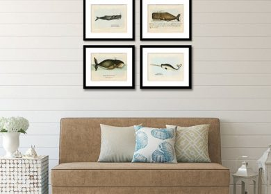Four prints of various whales