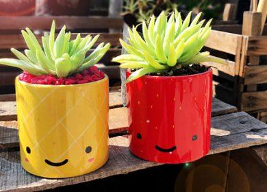 Kawaii plant pots